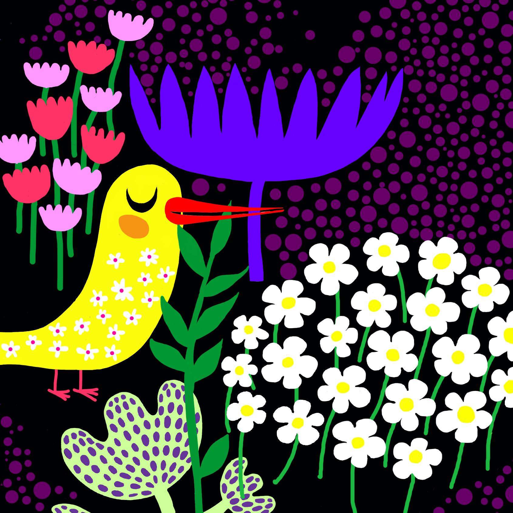 oiseau_carre